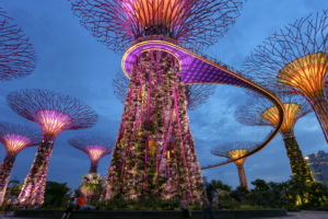 Light Garden Singapore